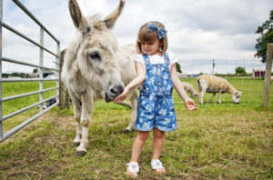 Bluebells Animal Patch - Feeding Twinkle the Donkey