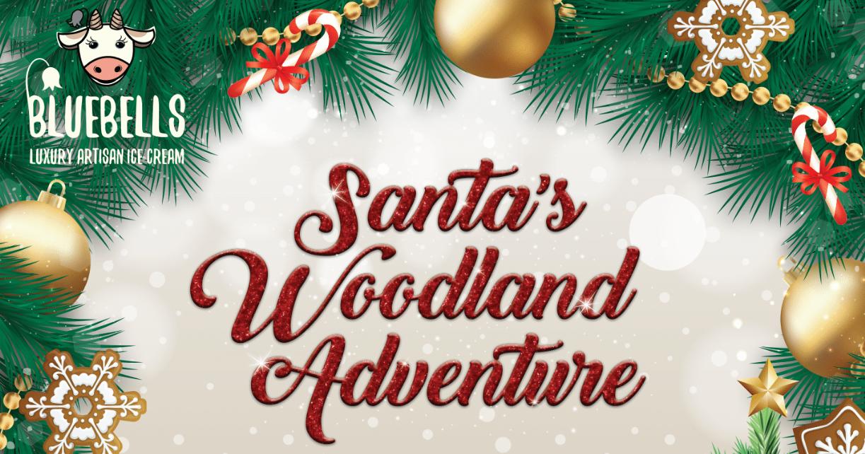 Santa's Woodland Adventure